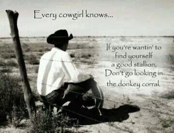 Every Cowgirl Knows