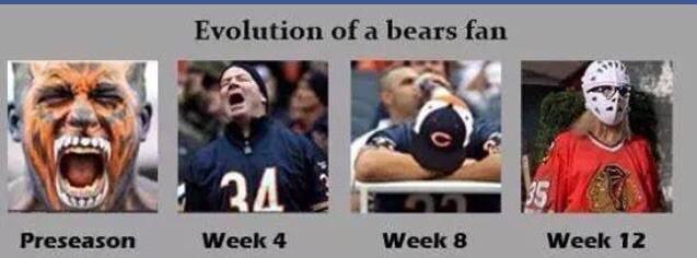 bearsfan
